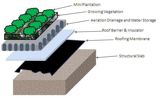 http://www.ccpl.com.sg/green-informat…-02-green-roof