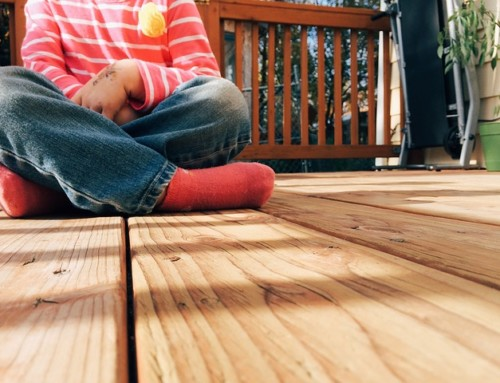 Materials Selection 02 – Species of Timber Decking